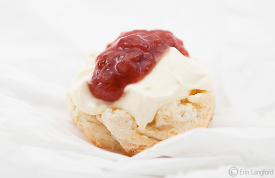 Gluten Free Scones in thirty minutes